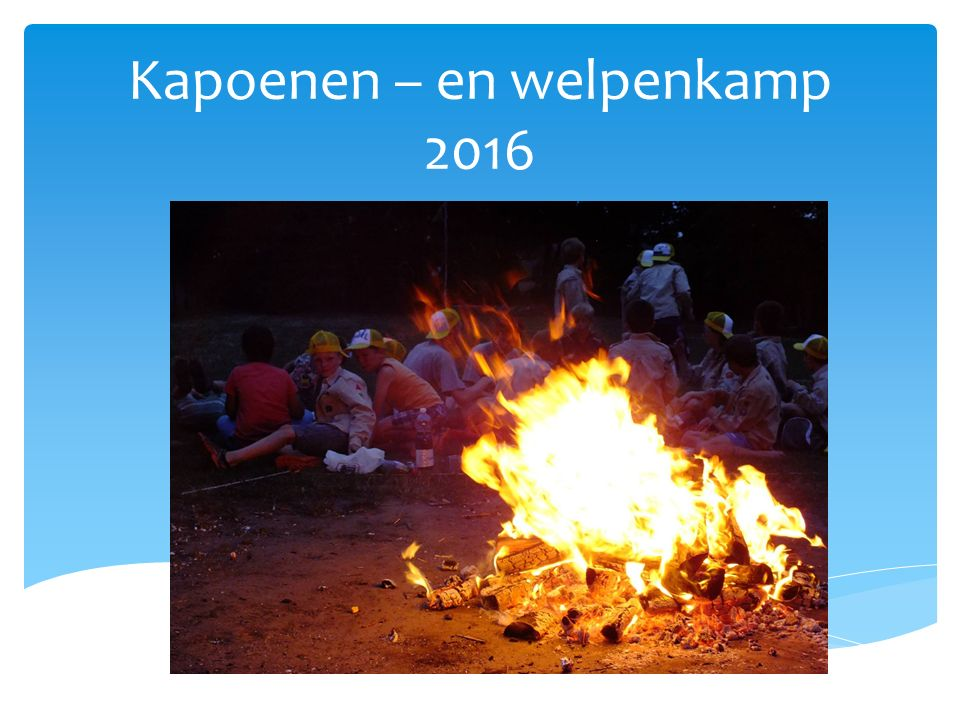 Kapoenen – en welpenkamp 2016
