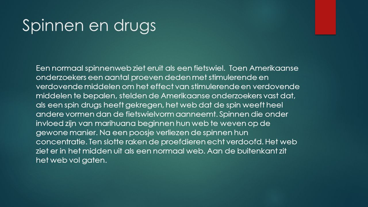 Spinnen en drugs