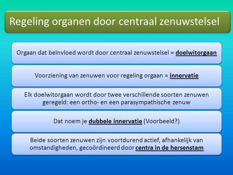 Regeling organen door centraal zenuwstelsel