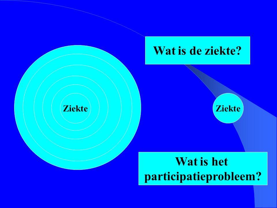 participatieprobleem