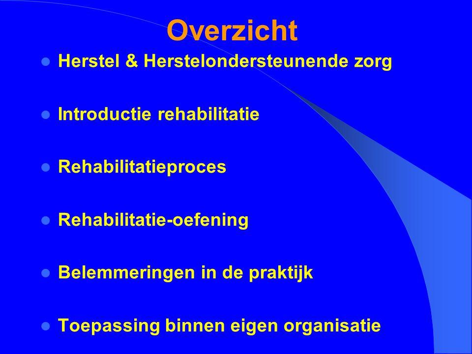 Overzicht Herstel & Herstelondersteunende zorg