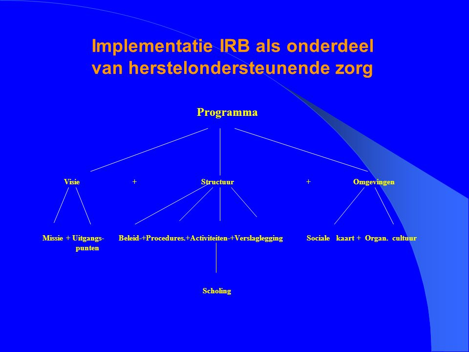 Implementatie IRB als onderdeel van herstelondersteunende zorg