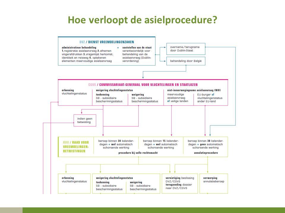 Hoe verloopt de asielprocedure