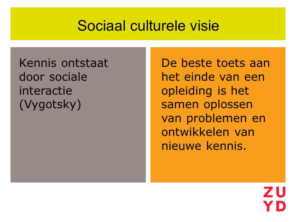 Sociaal culturele visie