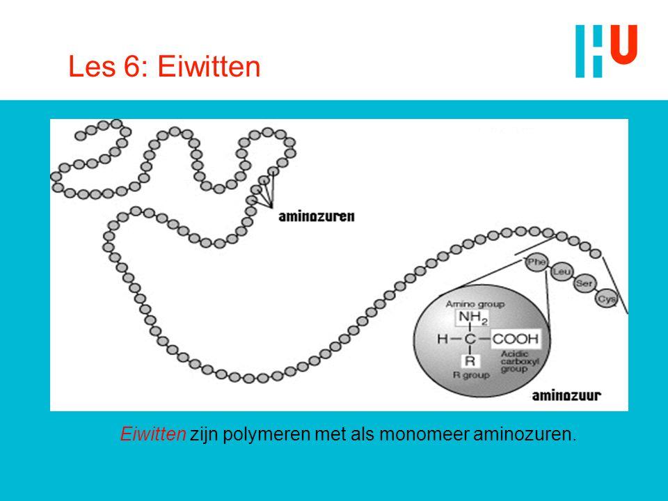 Les 6: Eiwitten Eiwitten zijn polymeren met als monomeer aminozuren.