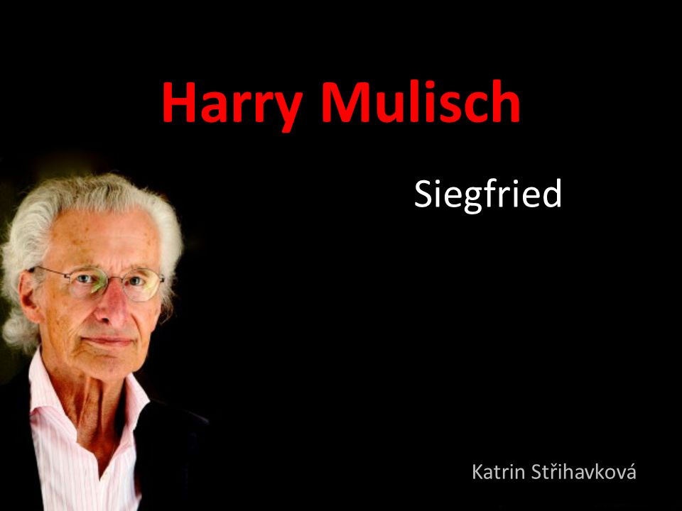 Harry Mulisch Siegfried Katrin Střihavková
