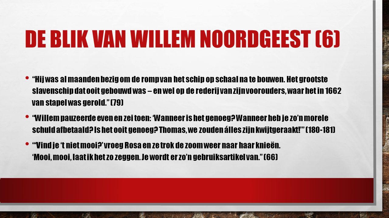 De blik van Willem noordgeest (6)