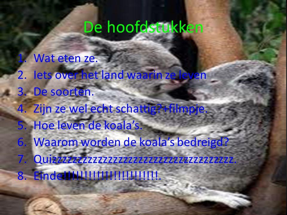 Koala ppt video online download for Wat is het leven