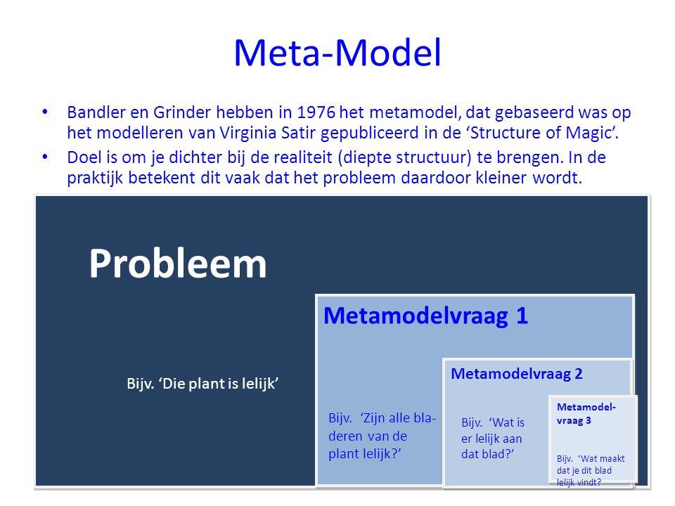 Probleem Meta-Model Metamodelvraag 1