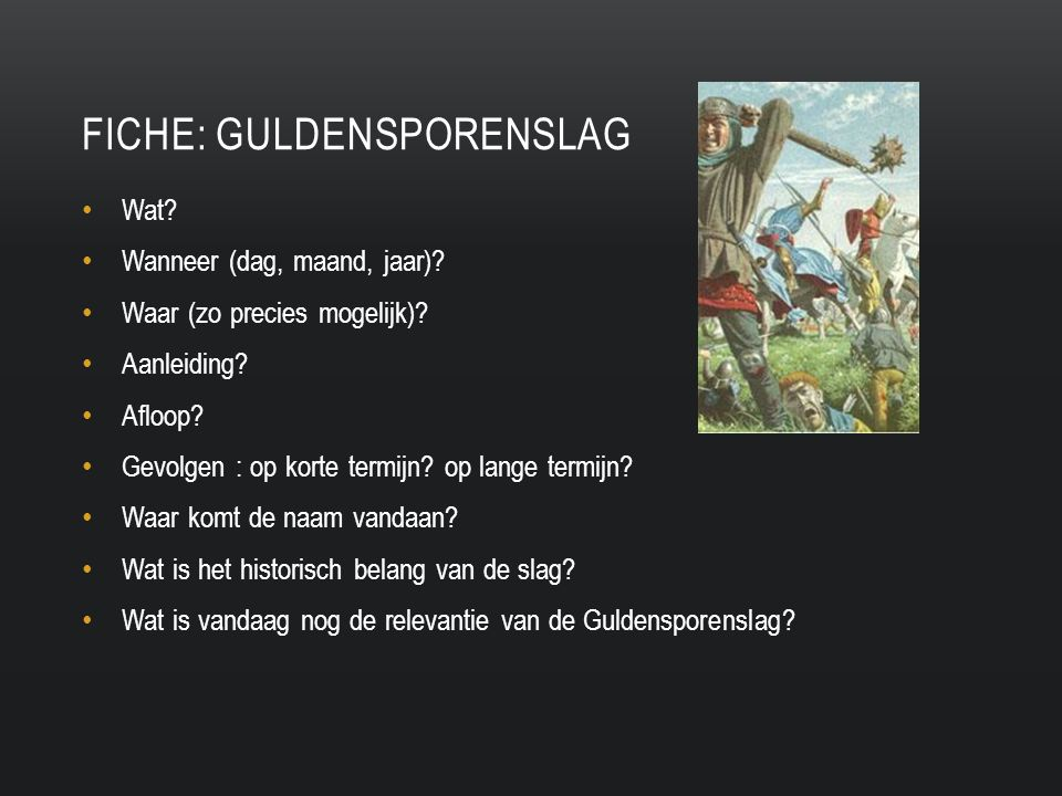 Fiche: Guldensporenslag