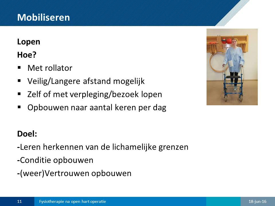 Mobiliseren Lopen Hoe Met rollator Veilig/Langere afstand mogelijk