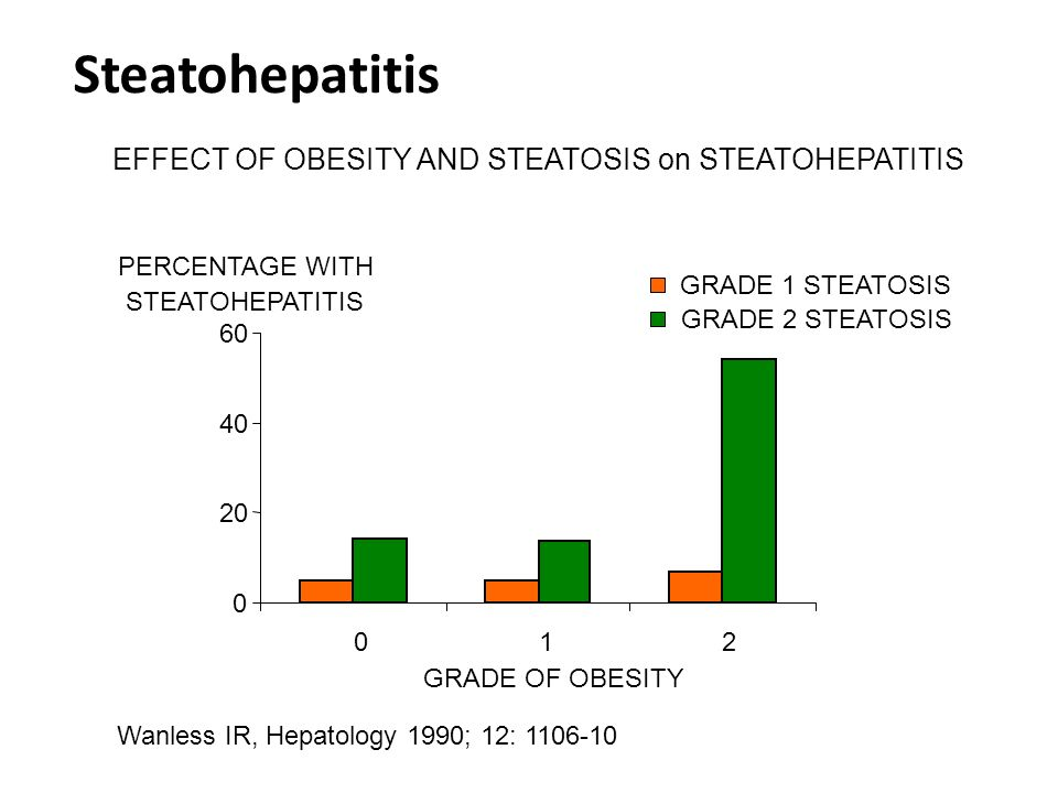 Steatohepatitis EFFECT OF OBESITY AND STEATOSIS on STEATOHEPATITIS 20