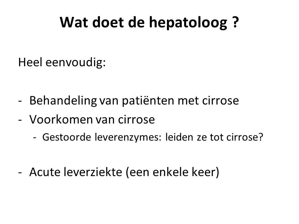 Wat doet de hepatoloog Heel eenvoudig: