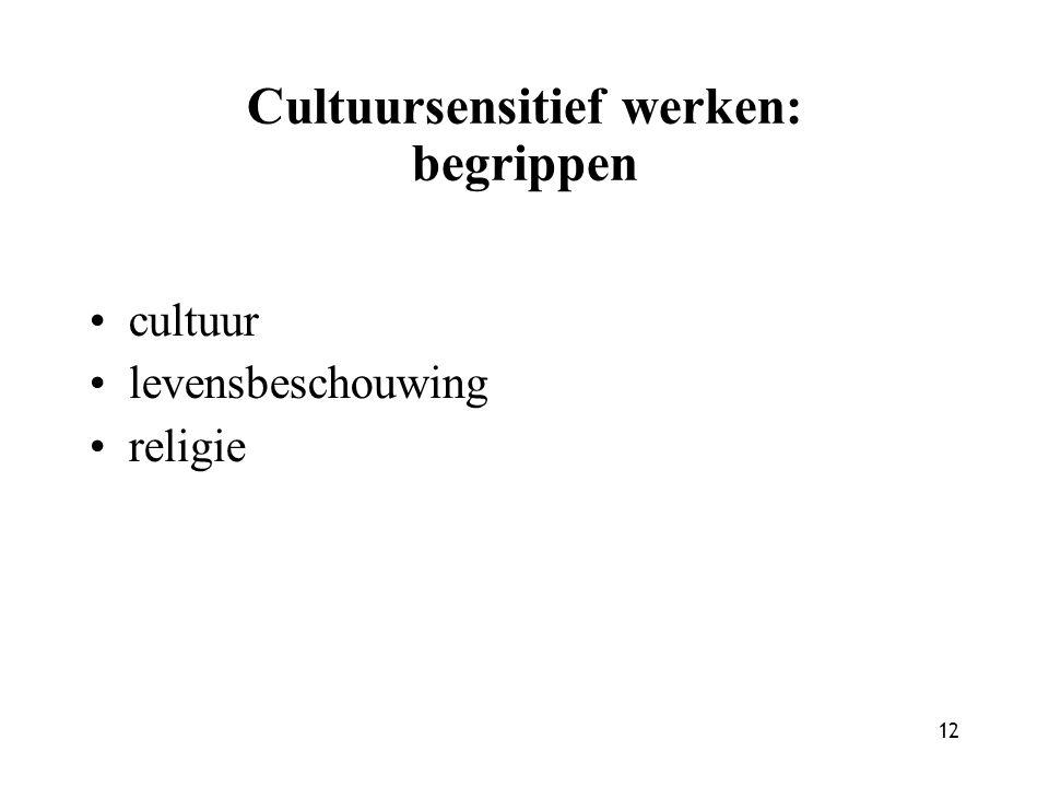 Cultuursensitief werken: begrippen