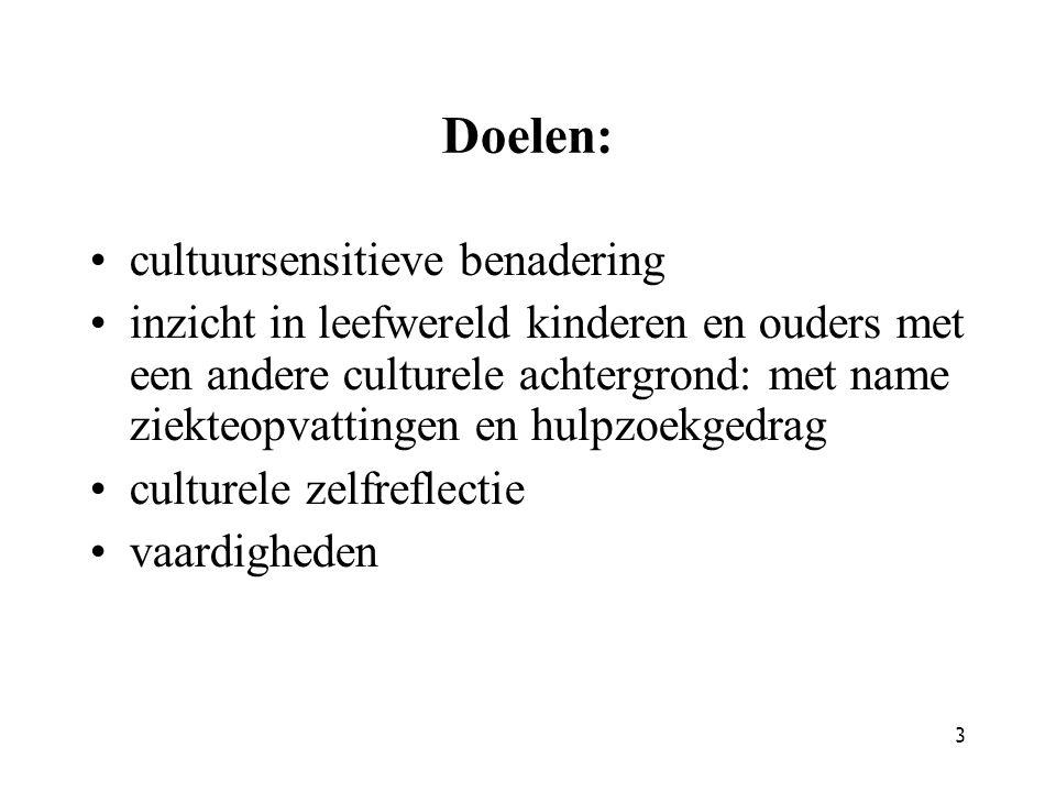Doelen: cultuursensitieve benadering