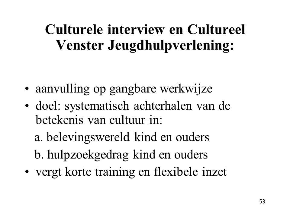 Culturele interview en Cultureel Venster Jeugdhulpverlening: