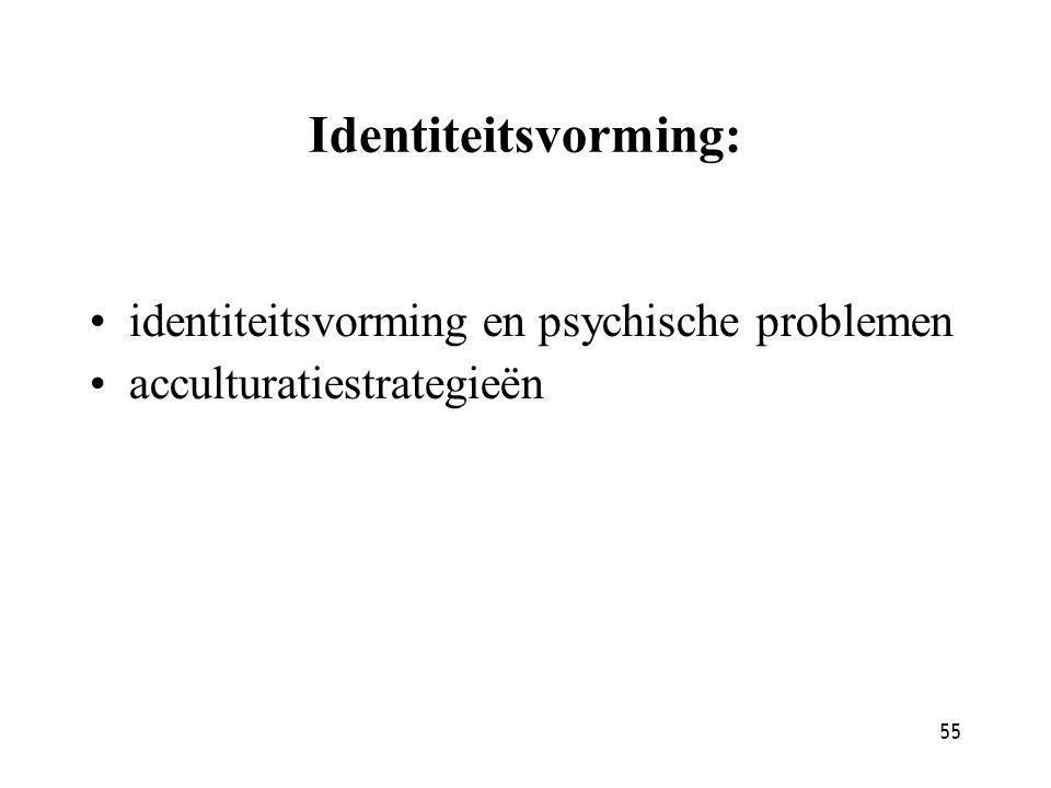 Identiteitsvorming: identiteitsvorming en psychische problemen