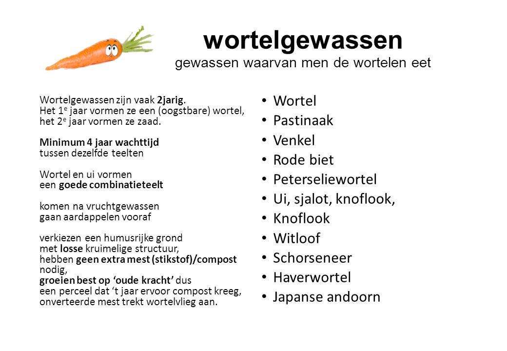 wortelgewassen gewassen waarvan men de wortelen eet
