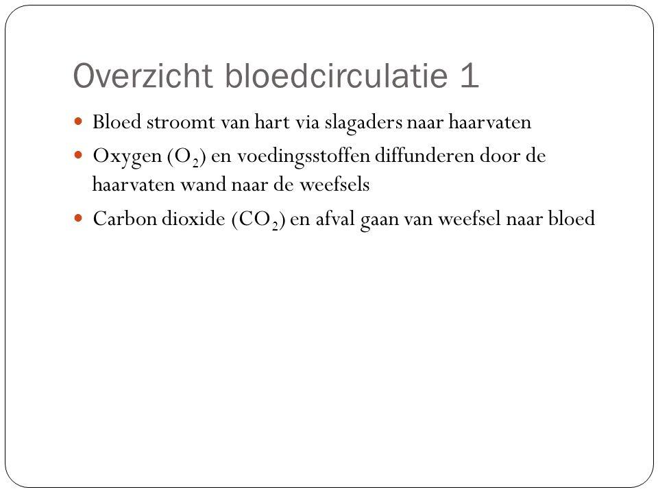 Overzicht bloedcirculatie 1