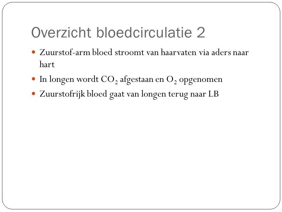 Overzicht bloedcirculatie 2