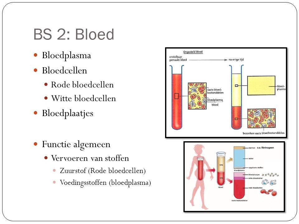 BS 2: Bloed Bloedplasma Bloedcellen Bloedplaatjes Functie algemeen