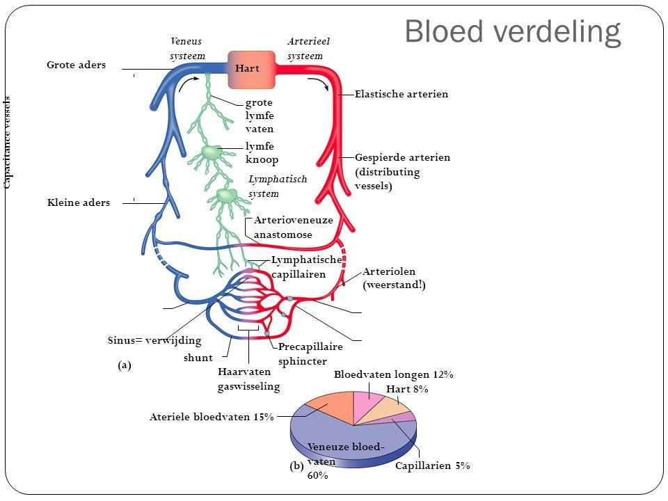 Bloed verdeling Veneus systeem Arterieel systeem Grote aders Hart