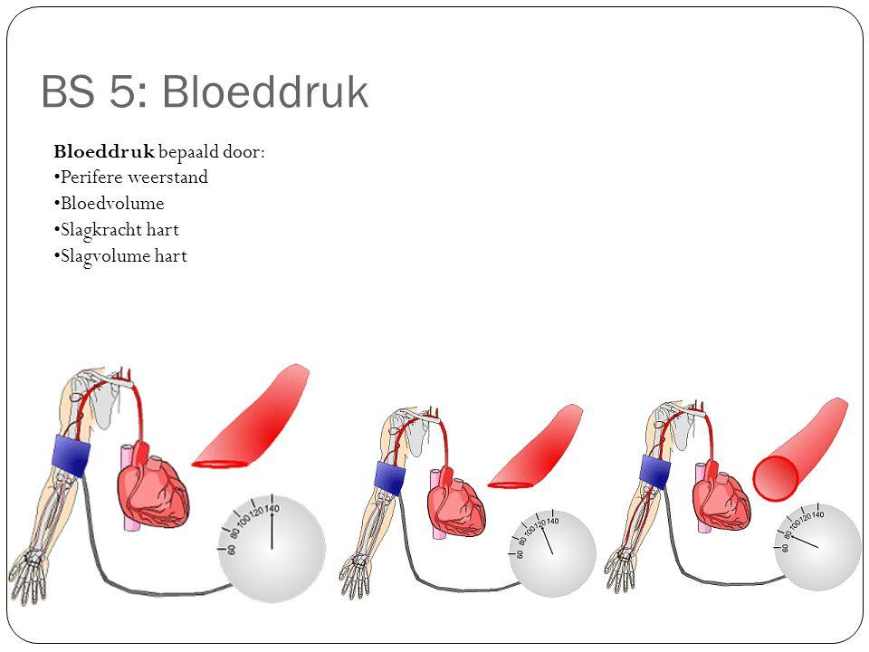 BS 5: Bloeddruk Bloeddruk bepaald door: Perifere weerstand Bloedvolume