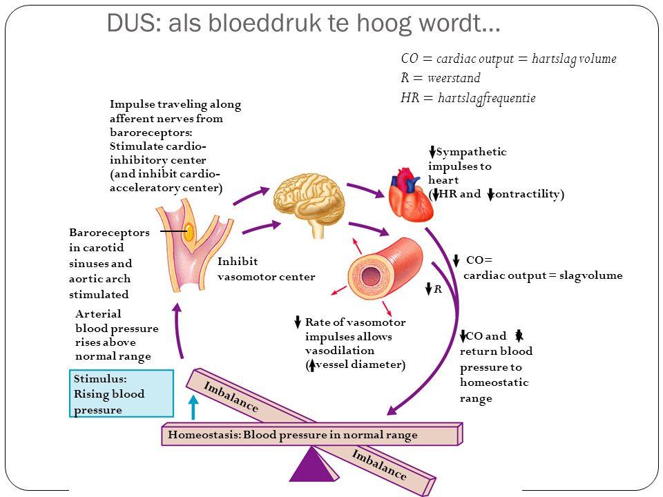 DUS: als bloeddruk te hoog wordt…