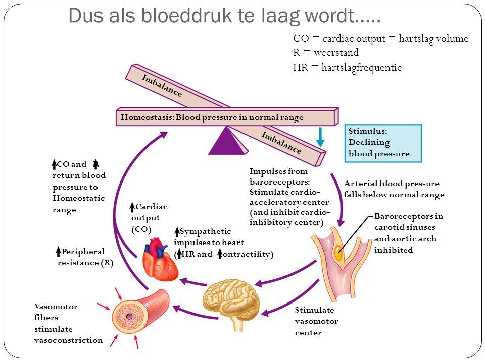 Dus als bloeddruk te laag wordt…..
