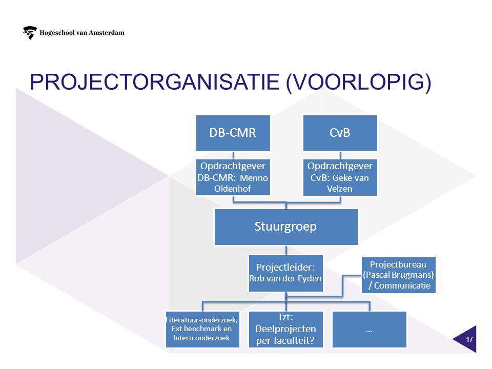 Projectorganisatie (voorlopig)
