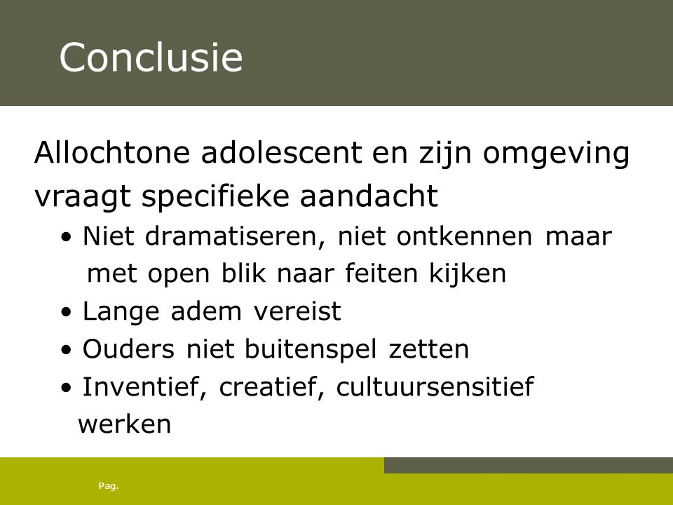 Conclusie Allochtone adolescent en zijn omgeving