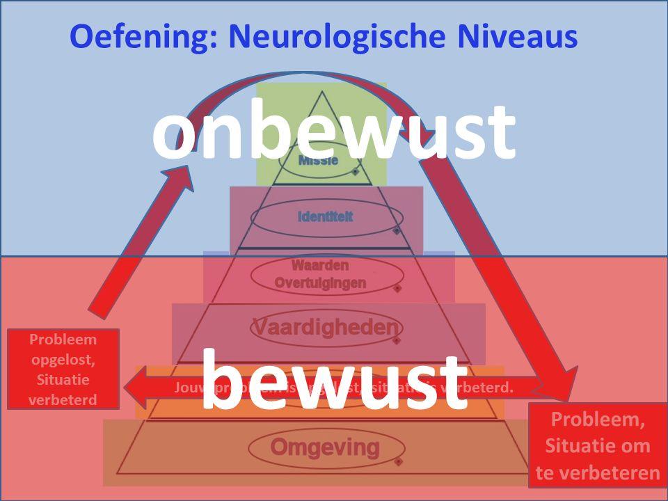onbewust bewust Oefening: Neurologische Niveaus