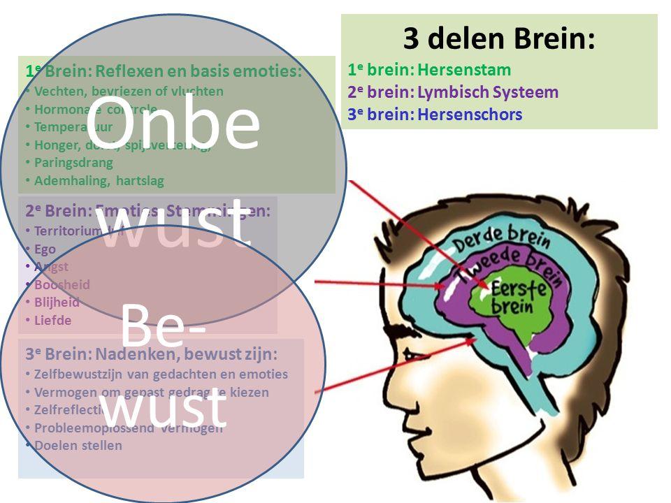 Onbewust Be-wust 3 delen Brein: 1e brein: Hersenstam