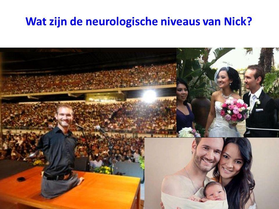 Wat zijn de neurologische niveaus van Nick
