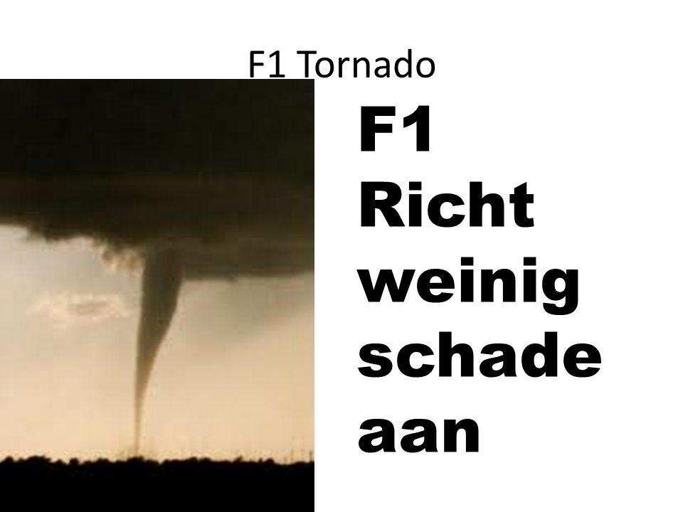 F1 Richt weinig schade aan