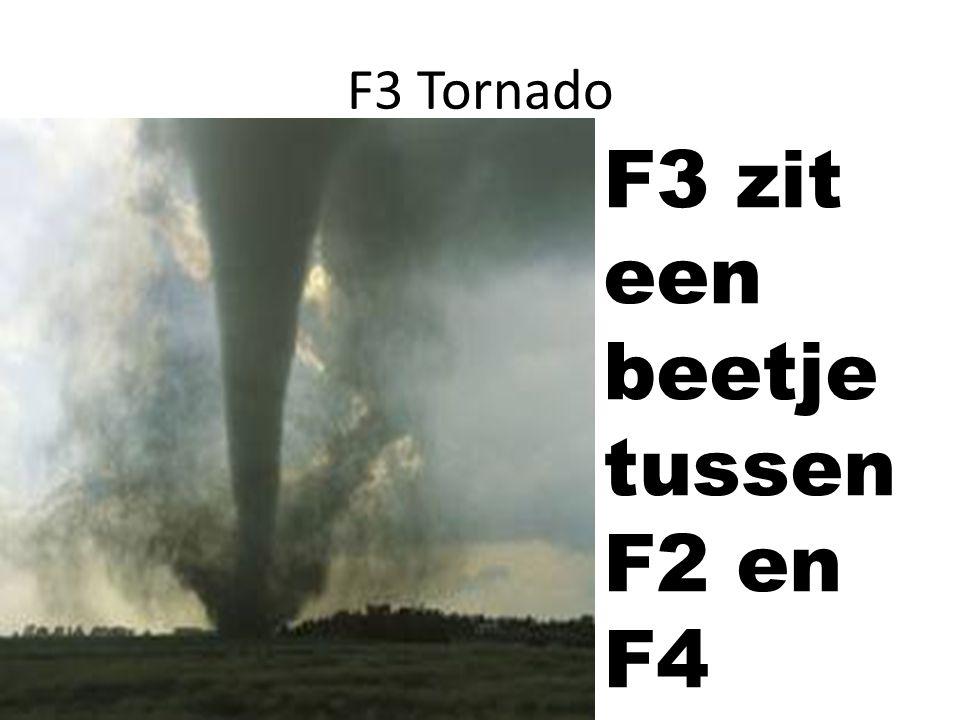 F3 zit een beetje tussen F2 en F4