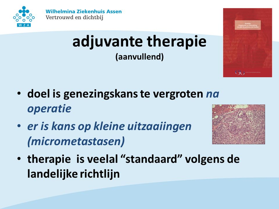 adjuvante therapie (aanvullend)