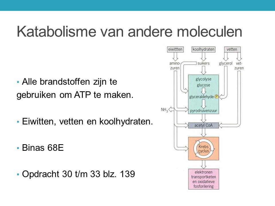 Katabolisme van andere moleculen