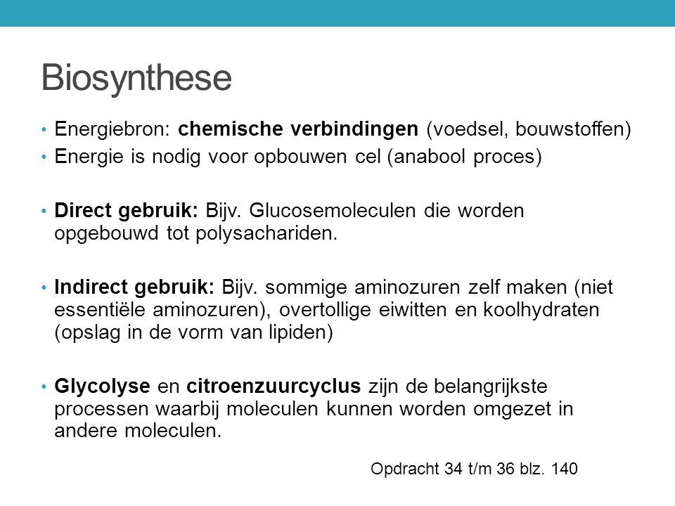 Biosynthese Energiebron: chemische verbindingen (voedsel, bouwstoffen)