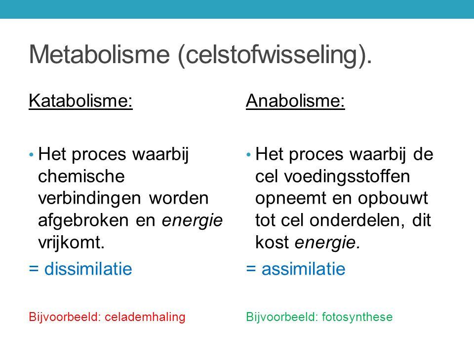 Metabolisme (celstofwisseling).