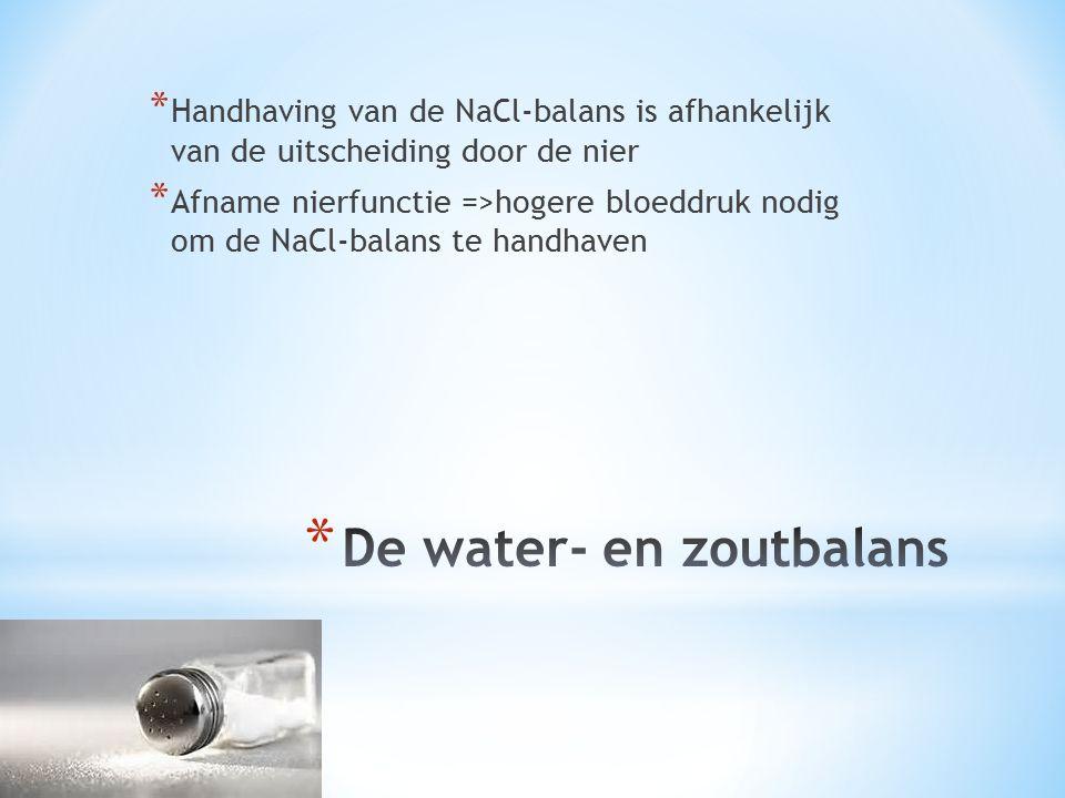 De water- en zoutbalans