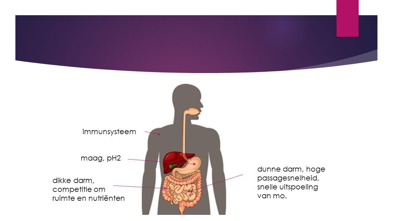 immunsysteem maag, pH2. dunne darm, hoge passagesnelheid, snelle uitspoeling van mo.