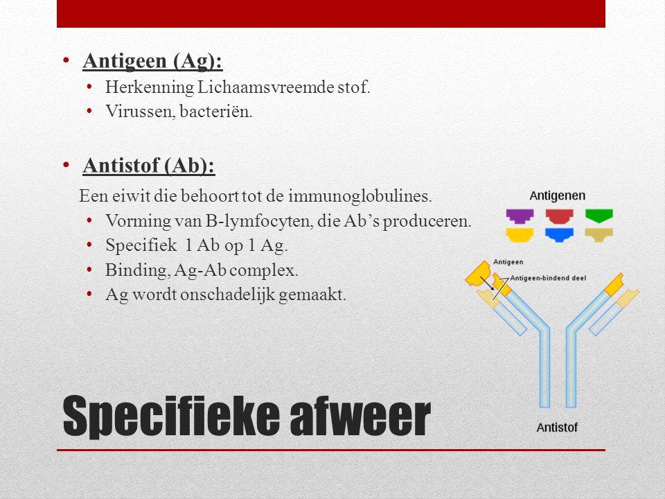 Specifieke afweer Antigeen (Ag): Antistof (Ab):