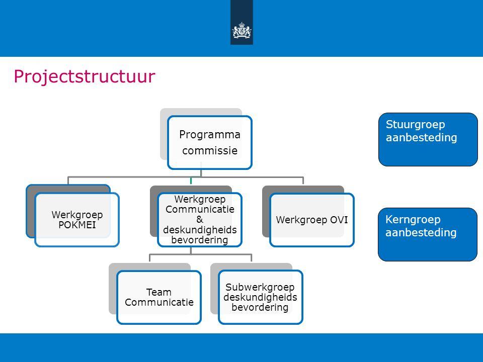 Projectstructuur Programma commissie Stuurgroep aanbesteding