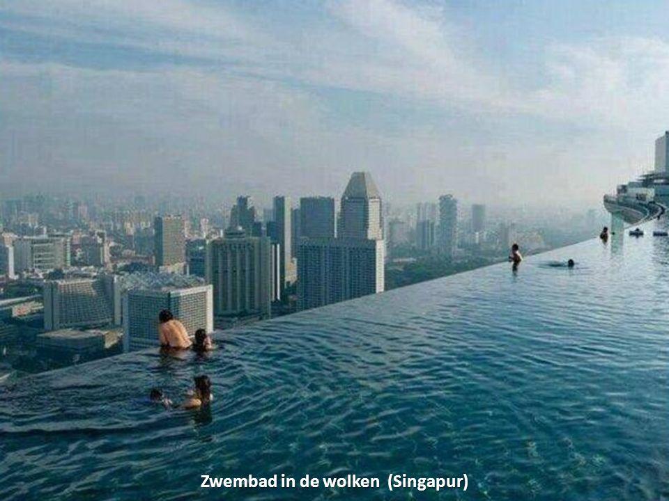 Zwembad in de wolken (Singapur)