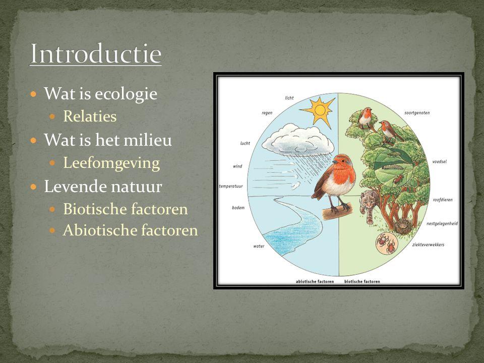 Introductie Wat is ecologie Wat is het milieu Levende natuur Relaties