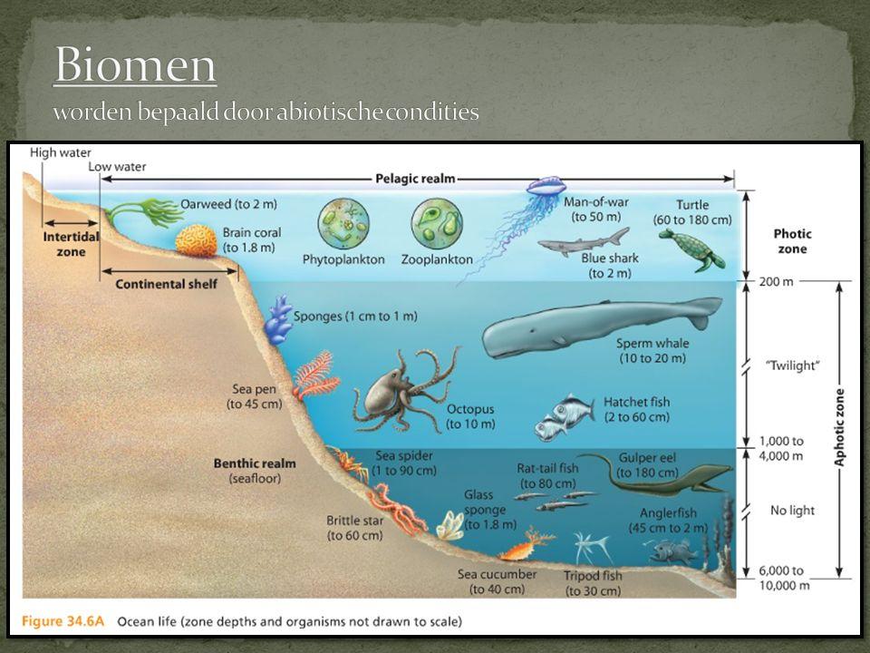Biomen worden bepaald door abiotische condities
