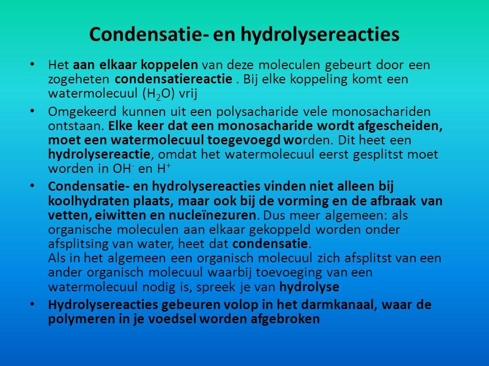 Condensatie- en hydrolysereacties
