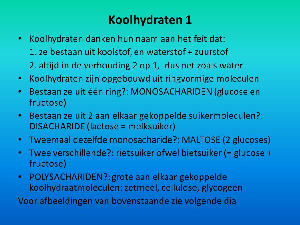 Koolhydraten 1 Koolhydraten danken hun naam aan het feit dat: