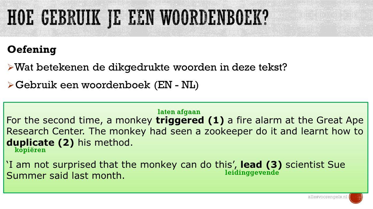 Hoe gebruik je een woordenboek